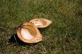 Empty Coconut