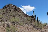 Picacho Peak Landscape