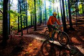 Cycling man riding on bike at sunset mountains forest landscape. Cycling MTB enduro flow trail track poster