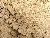 Dry Cracked Earth Macro