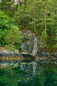 Green Forest On Rocky Fjord Shore With Ladder At Steep Ascent poster