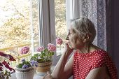 Old Lonely Woman Sitting Near The Window In His House With Flowers poster