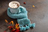 Cozy Autumn Composition. Hot Cocoa With Marshmallows In A Blue Ceramic Mug With Blue Knitted Scarf S poster