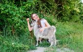 Girl Play Cute Goat. Feeding Animal. Protect Animals. Veterinarian Occupation. Eco Farm. Love And Ca poster