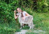 Girl Play Cute Goat. Feeding Animal. Animals Law. Woman And Small Goat Green Grass. Farm And Farming poster