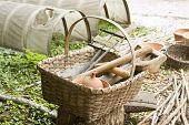 Basket Of Colonial Garden Tools