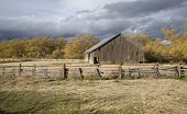 Rural Barn In Autumn Light