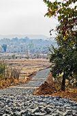 Tarmacadum Is Coming To Rural Haven