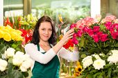 Happy young woman arranging flowers florist shop colorful roses