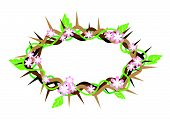 A Crown Of Thorns With Fresh Leaves