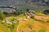 image of hmong  - Rice Terraced Fields And Hmong Minority Village In Sapa - JPG