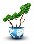3d global growth