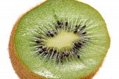 Cross Section Of Kiwi Fruit Close-Up On White Background