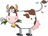 stock photo of moo-cow  - Dairy Cow With Flower In Mouth Cartoon Character - JPG