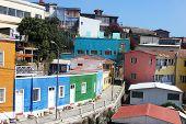 Colorful houses at Hill Bellavista in Valparaiso, Chile
