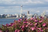 Space Needle Blur With Flowers In The Foreground I