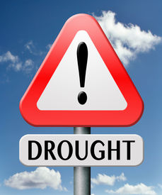 stock photo of water shortage  - drought caused by water shortage leads to crop failure and food scarecy and desertation - JPG