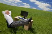 Businessman Relaxing In A Green Office