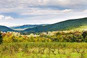 Panorama Of Caucasian Mountains