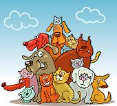 Group Of Cats And Dogs On Blue Sky