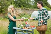 stock photo of local shop  - Young female farmer selling some vegetables to a cute man at farmers market - JPG