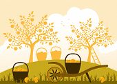 picture of hand-barrow  - vector hand barrow and baskets of apples in apple orchard - JPG