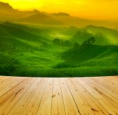 Wooden floor and sunrise view of tea plantation landscape at Cameron Highland, Malaysia.