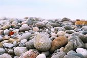 Background of colofrul beach pebbles of different shapes and water