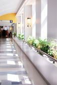 picture of reception-area  - Hospital corridor leading to a reception area - JPG