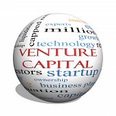 Venture Capital 3D Sphere Word Cloud Concept