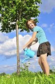 Teenage girl watering a young tree on blue sky background