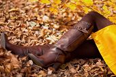 Leather Boot On Leaves- Selective focus