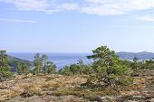 View of the seascape from a part of the High Coast Heritage, Sweden.