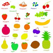 pic of drow  - set handdrow fruits and berries - JPG