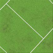 White Stripe On Grass Field