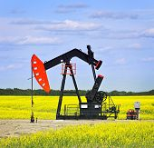 Oil pumpjack or nodding horse pumping unit in Saskatchewan prairies, Canada