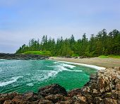 stock photo of pacific rim  - Rocky shore of  Pacific Rim National park - JPG