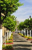 picture of cabana  - Plaza Tapatia leading to Hospicio Cabanas in historic Guadalajara center - JPG