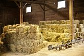 Interior of barn with hay bales stacks and conveyor belt