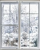 foto of insulator  - Home vinyl insulated windows with winter view of snowy trees and plants - JPG