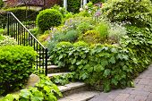 Landscaped garden path with natural stone steps and metal railing