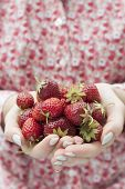 Closeup of female hands holding freshly picked strawberries with copy space