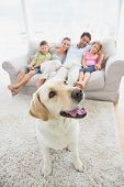 Happy family sitting on couch with their pet yellow labrador on the rug at home in the living room