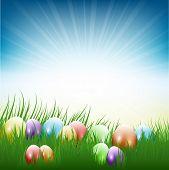 Colourful Easter eggs nestled in grass