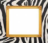 Blank Golden Frame  With Zebra Texture