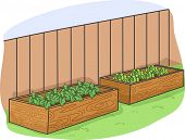 Illustration Featuring Plants in a Raised Box