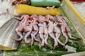 Skinned Raw Frogs For Sale At Thailand Market