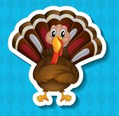 illustration of a turkey with a blue background