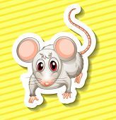Illustration of a single rat with background
