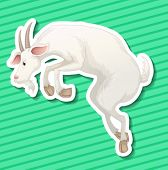Illustration of a single goat with green background